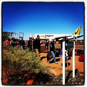 Tiger in Alice Springs