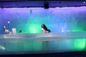 Ice Bar at Santa Park