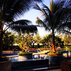 How can you not love India! Westin Hotel