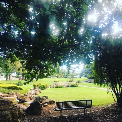 Lovely_morning_walk_in__queanbeyan__nsw.__pretty__travel__travels__wanderlust__worklife__traveling__traveloz__travellife