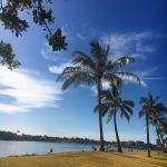 wassup_afternoon_sessions_on_the_stand_up_paddle_board-_hoping_to_make_this_a_regular_arvo_activity-__suplove_on_the__goldcoast-1