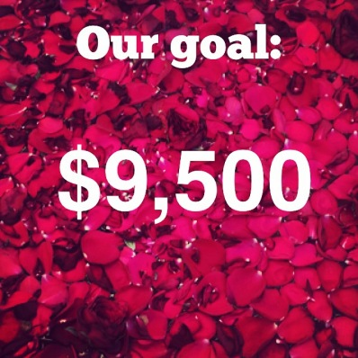 goal $9,500
