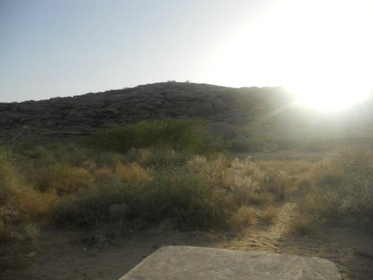 vipassana view